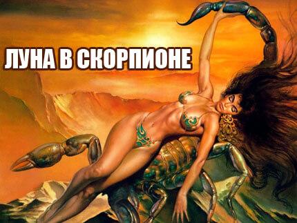skorpion2