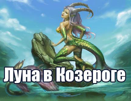 kozerog2