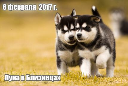 2017-02-06-2
